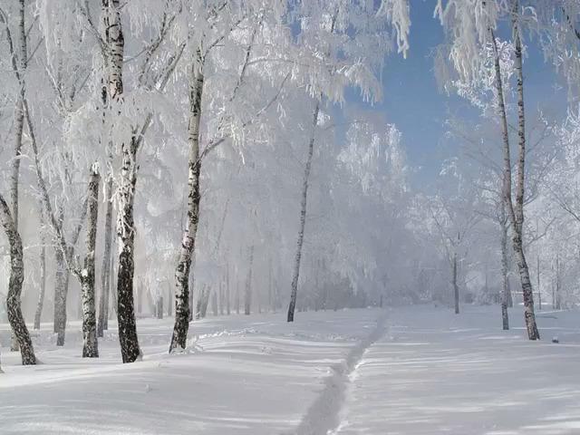 Зимушка-зима...