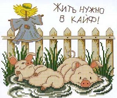 Жить нужно в кайф)))