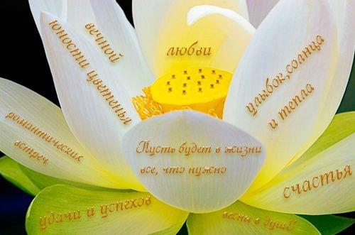 Поздравление желаю красоты жизнь
