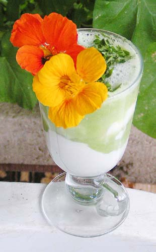 Летний коктейль - кефир, свежевыжатый огуречный сок и зелень.